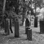 New England Earth-bound Paranormal Investigations (NEPi)